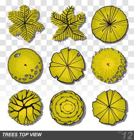 A set of Trees - top view. use in your landscape design. illustration Illustration