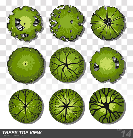 A set of Trees - top view. use in your landscape design. illustration  イラスト・ベクター素材