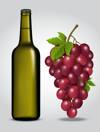 Bottle of wine with grapes illustration on light background.