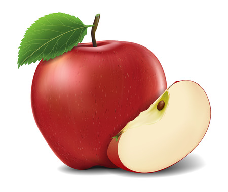 Vector illustration of red apple.