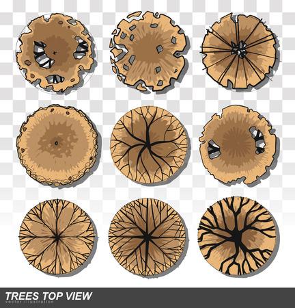 Vista superior de conjunto de árboles para ilustración de diseño de paisaje