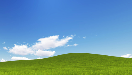 Panoramic Green Grass with cloud and the blue sky. 3d render