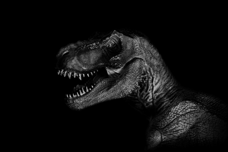 Tyrannosaurus Rex close up on dark background. Imagens
