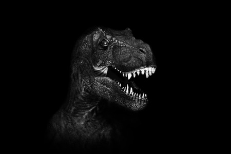Tyrannosaurus Rex close up on dark background. 免版税图像