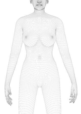 Beautiful naked woman poses. Female Body. 3d wireframe vector.