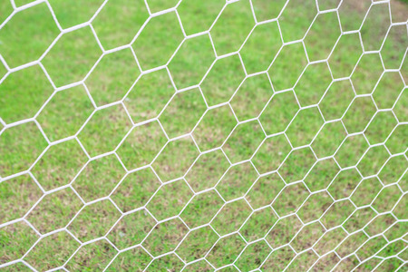 Mesh football goal on a green grass background Stock Photo