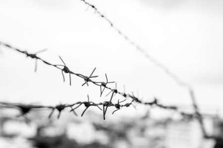 Black and white Barbed wire on the background blurred