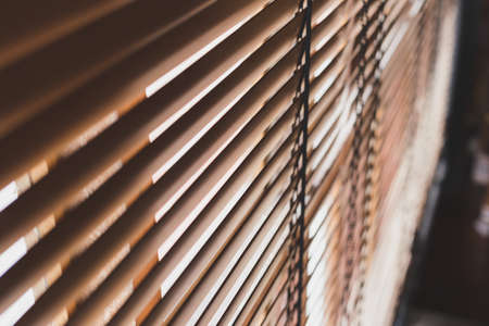 Selective focus Pattern of bamboo curtain texture background with sunlight