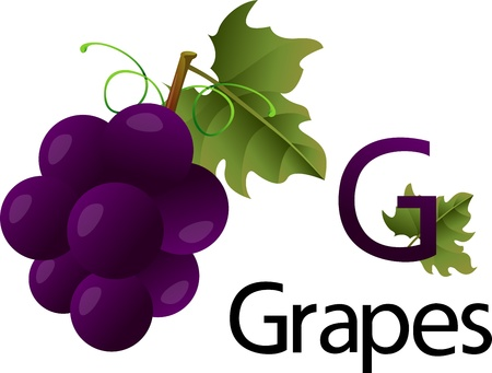 font g with grapes