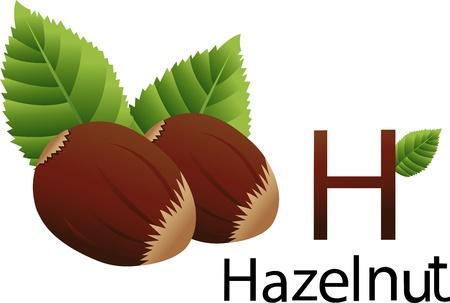 font h with hazelnut