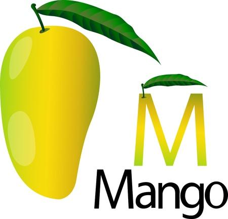mango fruta: letra m con mango
