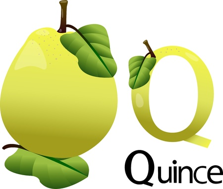 quince: font q with quince