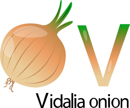 font v with vidalia onion Stock Photo - 20860691
