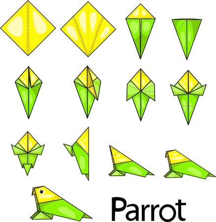 Illustrator of parrot origami