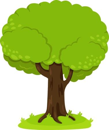 Illustrator of tree Vector