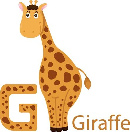 Illustrator of G with giraffe