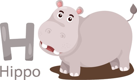 Illustrator of H with hippo Vector