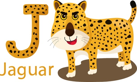 Illustrator of J with jaguar Vector