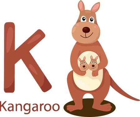 Illustrator of K with kangaroo Vector