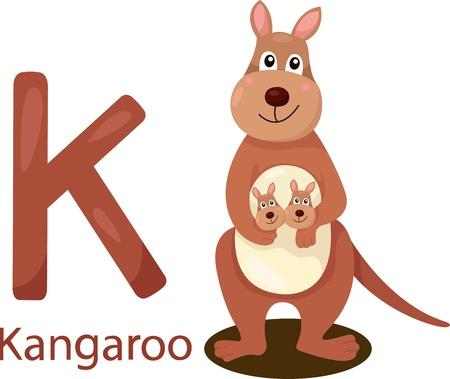 Illustrator of K with kangaroo Stock Vector - 21686141