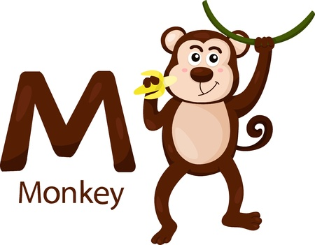 Illustrator of M with monkey Vector