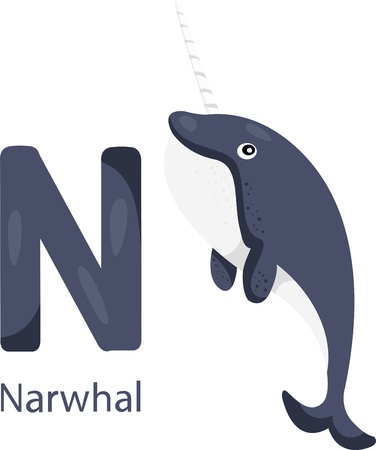Illustrator of N with narwhal Illustration