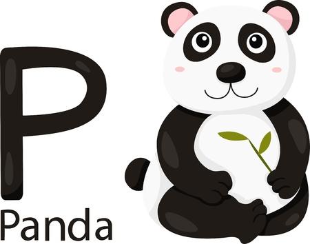 alphabet wallpaper: Illustrator of P with panda Illustration