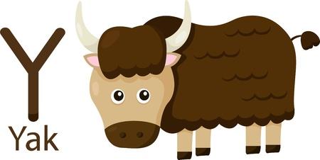 yak: Illustrator of Y with yak Illustration