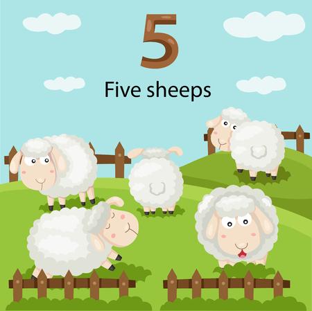 Illustrator of number five sheeps Vector