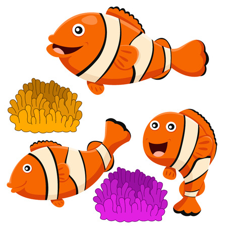 clown fish: Illustrator of clown fish