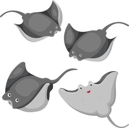 Illustrator of Stingrays Illustration