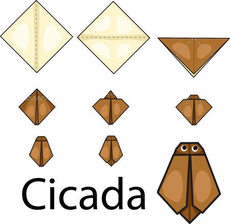 cicada: Illustrator of origami with cicada Illustration