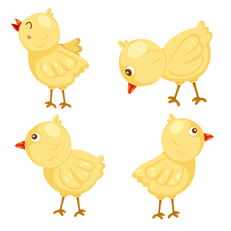 Illustrator of chickens set Vector