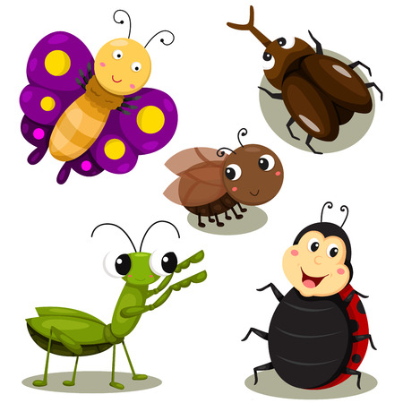 cartoon bug: Illustrator of bug cartoon cute