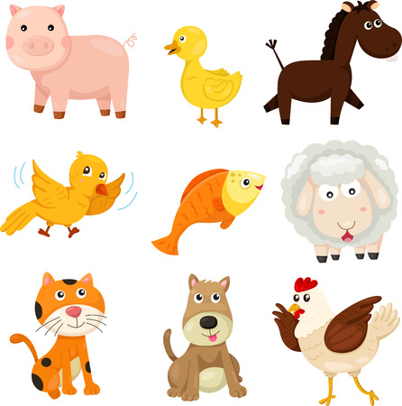 Illustrator of farm animal Vector