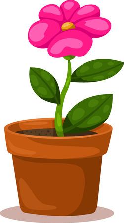 fresh pot: Illustrator of flower