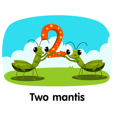 Illustrator of number two mantis Vector