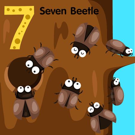 cicada: Illustrator of number seven beetle