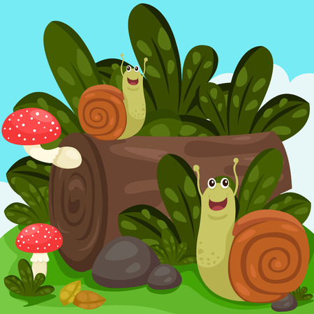 Illustrator of snails Vector