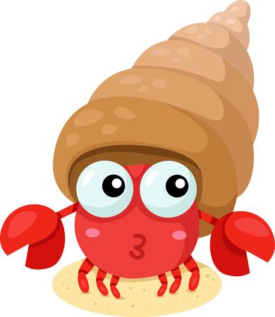 Illustrator of hermit crab
