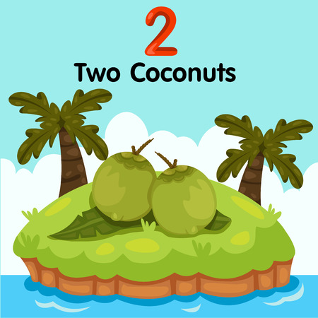 supple: Illustrator of number two coconuts