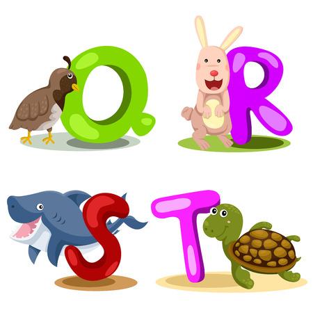children s art: Illustrator alphabet Q,R,S,T