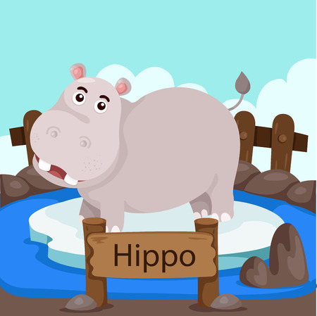behemoth: Illustrator of Hippo in the zoo