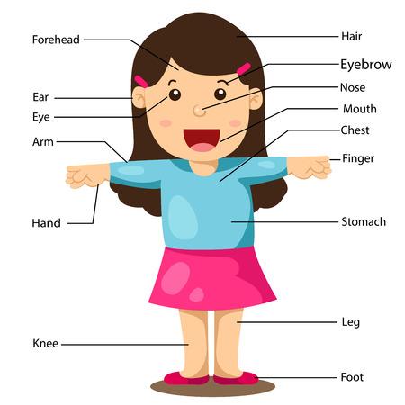 레이블이 신체 부위와 소녀의 그림