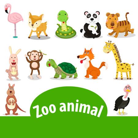 zoo animal: Illustrator of zoo animal