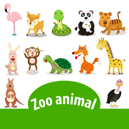 Illustrator of zoo animal