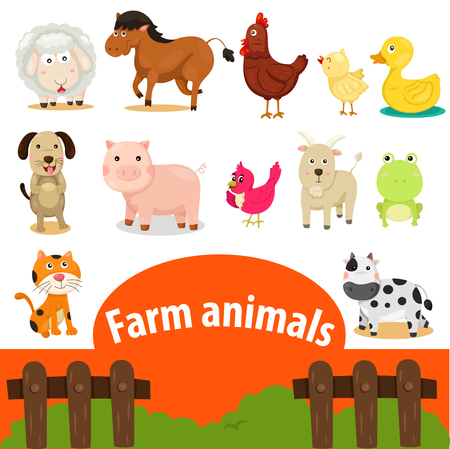 animal vector: Illustrator of farm animals