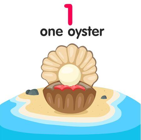 oyster: Illustrator of number one oyster Illustration