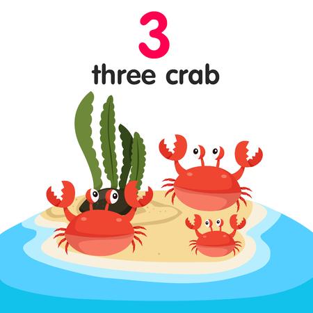 the crab: Ilustrador del n�mero tres de cangrejo