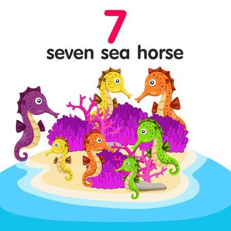 horse sea: Illustrator of seven sea horse